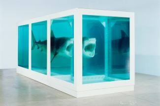 Damien Hirst, The Physical Impossibility of Death in the Mind of Someone Living, 1991, Lenticular print. Courtesy: Paul Stolper, London
