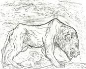 Löwe 1