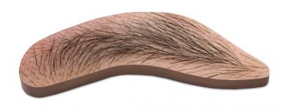 Eyebrow by John Baldessari