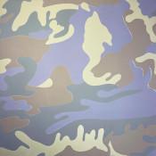 Camouflage IIB (FS II.407)
