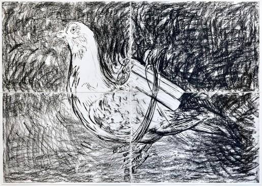 Adel Abdessemed, Pigeon, 2016