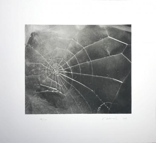 Vija Celmins, Spider Web, 2009
