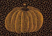 Pumpkin (Y)