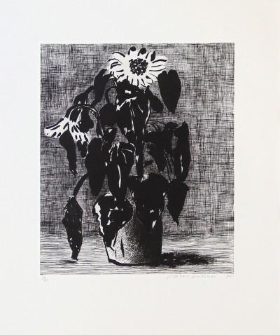 David Hockney, Sunflower II, 1995