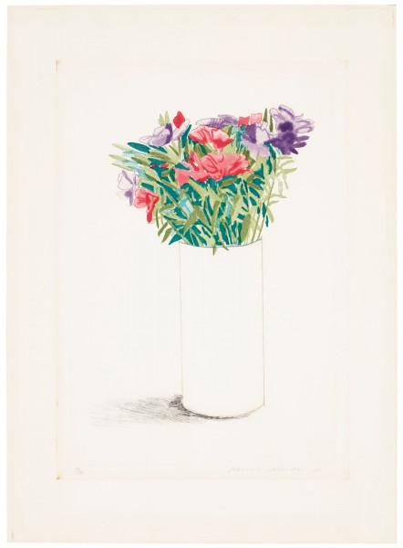 David Hockney, Godetia, 1973