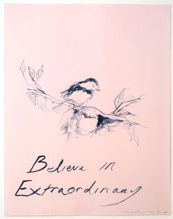 Believe In Extraordinary by Tracey Emin