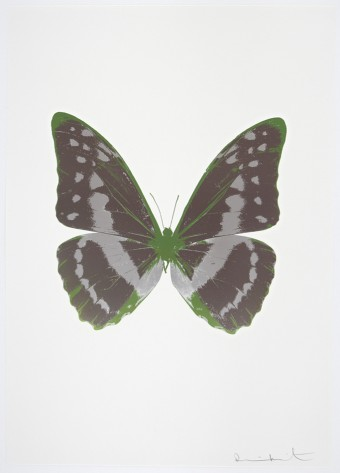 The Souls III - Gunmetal/Silver Gloss/Leaf Green by Damien Hirst