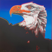 "Bald Eagle  FS II.296, from the Portfolio ""Endangered Species"""