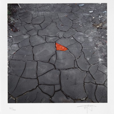Red leaves on cracked earth by Andy Goldsworthy