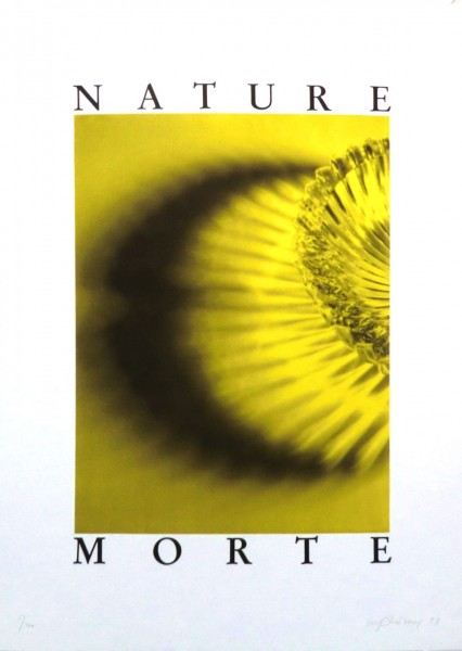 Urs Lüthi, Nature Morte, 1991