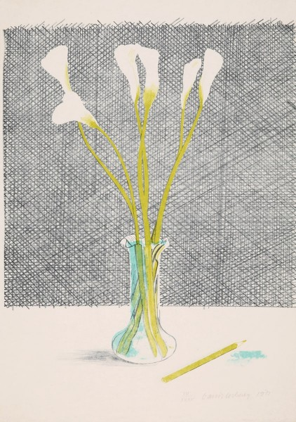David Hockney, Lillies, 1971