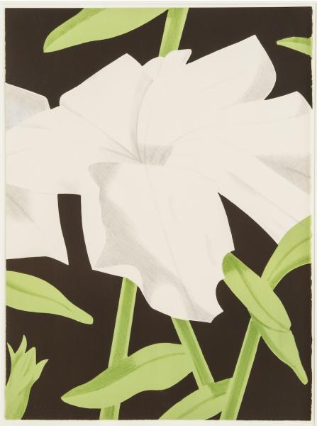 Alex Katz, White Petunia, 1969