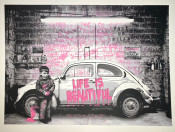 VW Bettle Pink