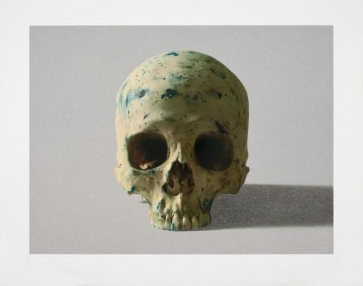 Damien Hirst, Studio Half Skull, face on, 2009