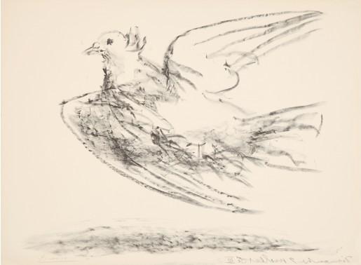 Pablo Picasso, Le vol de la colombe, 1950