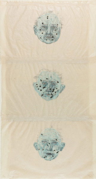 Kiki Smith, Constellations, 1996