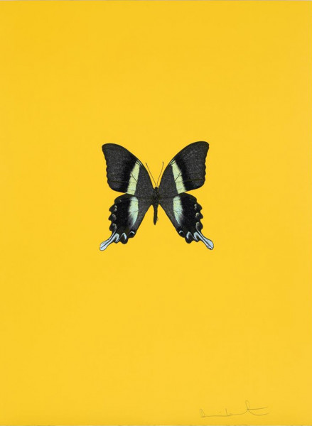Damien Hirst, New Beginnings 2, 2011