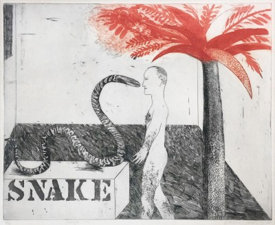 David Hockney, Jungle Boy, 1964