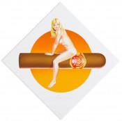 Hav-a-Havanna #3 (Partagas)