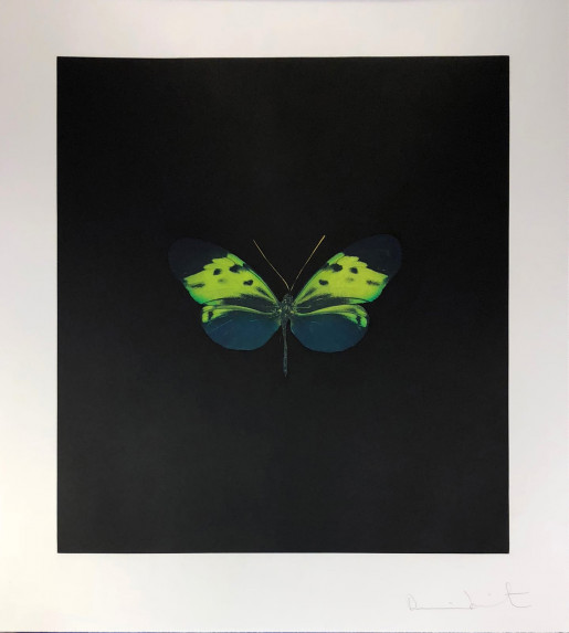 Damien Hirst, The Souls on Jacob's Ladder Take Their Flight (Small Green), 2007