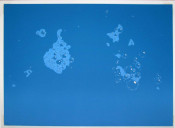 Blue Suds