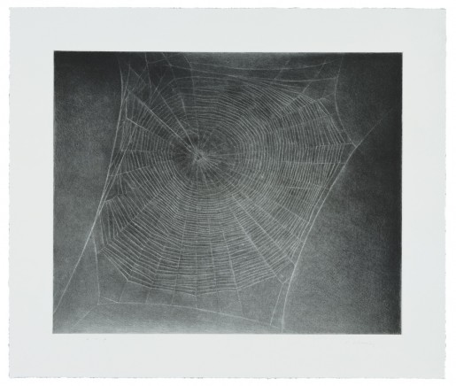 Vija Celmins, Untitled (Web 4), 2002