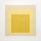 White Line Square XVII