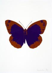 The Souls II - Imperial Purple/Prairie Copper/Blind Impression