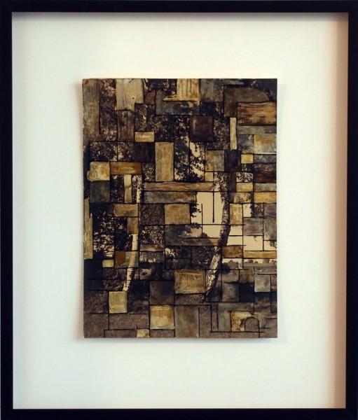 Shannon Bool, Superimposition 3C, 2012