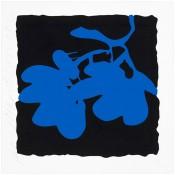 Lantern Flowers, May 10, 2012 (Blue)
