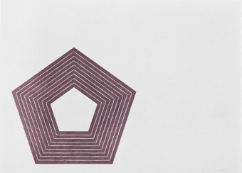 Charlotte Tokayer by Frank Stella