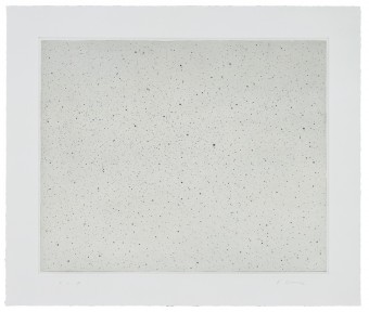 Night Sky I (Reversed) by Vija Celmins