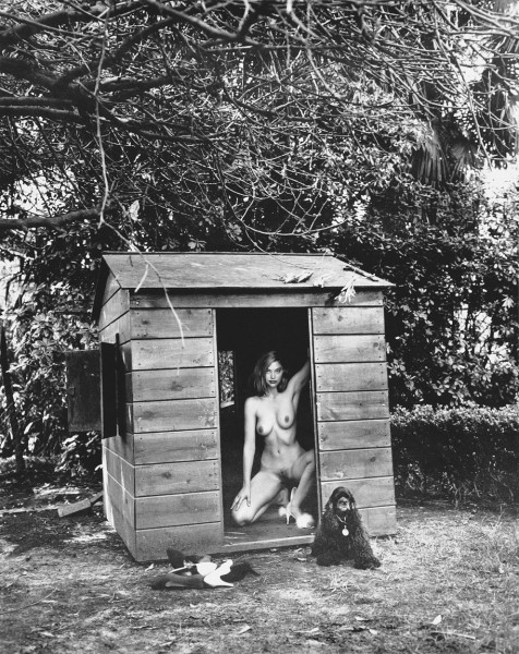 Helmut Newton, Domestic Nude 7, 1992