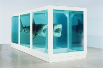 The Physical Impossibility of Death in the Mind of Someone Living by Damien Hirst
