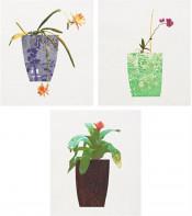 Three Landscape Pots