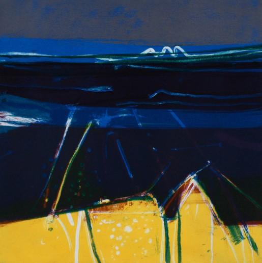 Barbara Rae, Valentia Shore, 2006