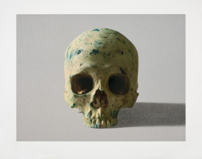 Damien Hirst, Studio Half Skull, face on, 2009