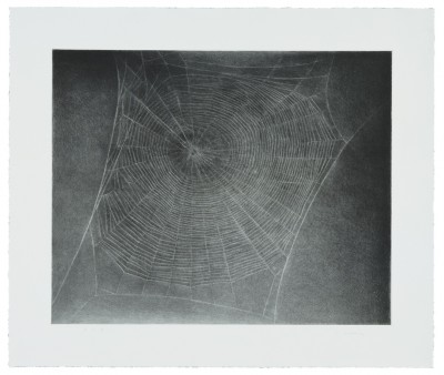 Vija Celmins - Untitled (Web 4)