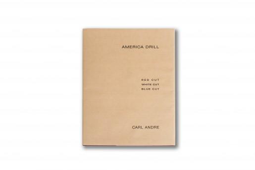 Carl Andre, America Drill, 2003