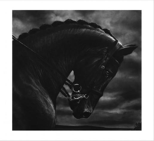 Robert Longo, Bucephalus, 2017
