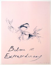 Believe In Extraordinary