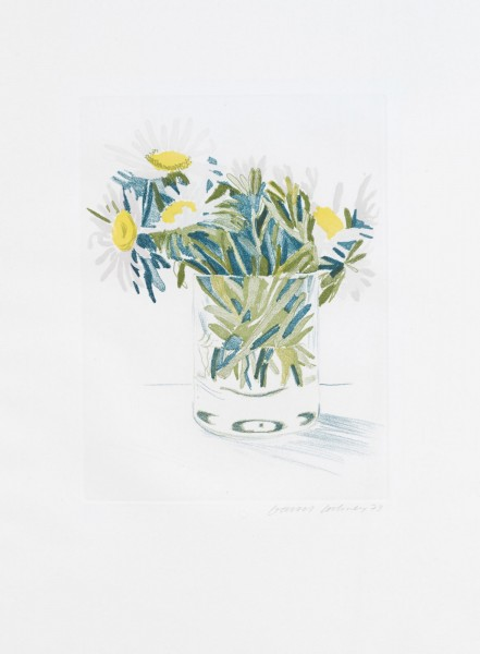 David Hockney, Marguerites, 1973