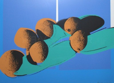 "Cantaloupes I (FS II.201), from the Portfolio ""Space Fruit: Still Lifes""  by Andy Warhol"