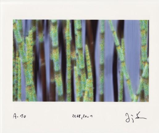 Jörg Sasse, Arbeiten am Bild, 2001