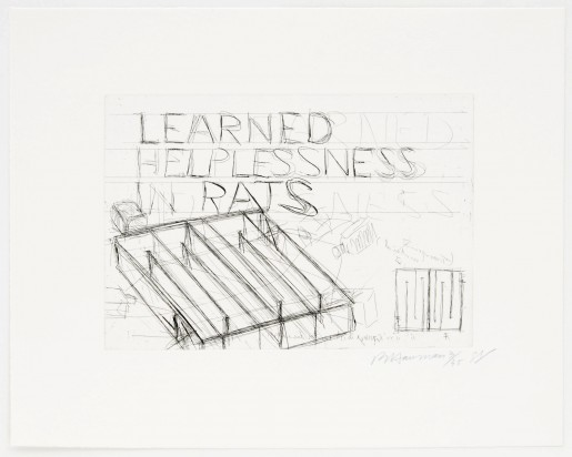 Bruce Nauman, Learned Helplessness in Rats, 1988