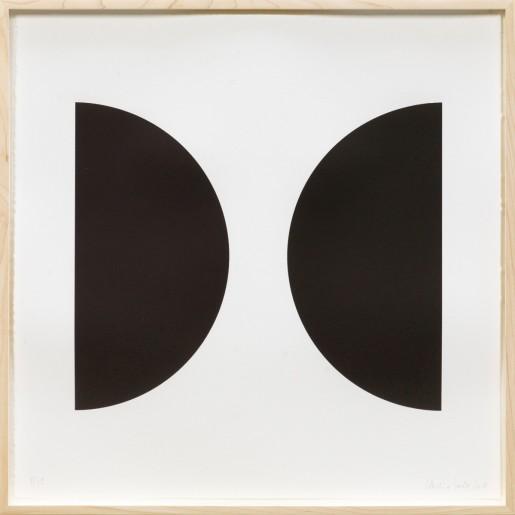 Claudia Comte, Demi-cercles III, 2010