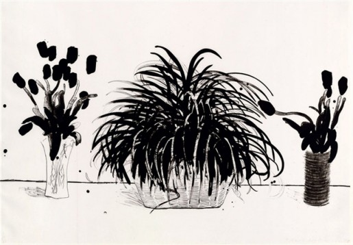 David Hockney, Two Vases of Cut Flowers and a Liriope plant, 1979
