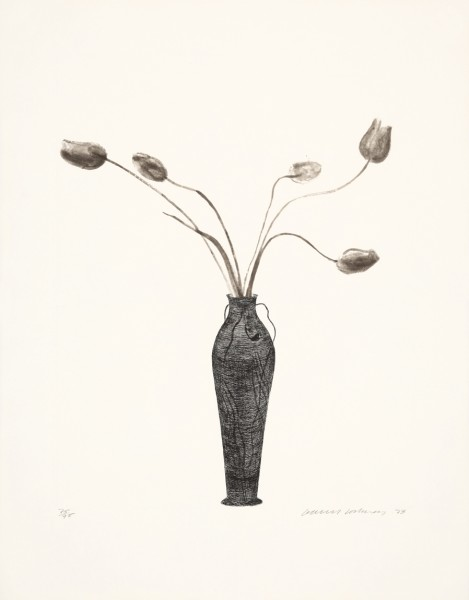 David Hockney, Tulips, 1973