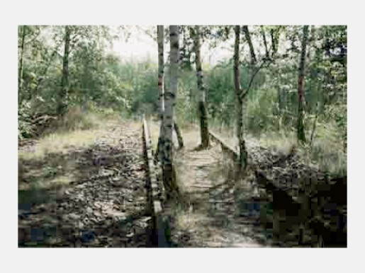 "Thomas Ruff, ""wb02"" from jpegs II, 2008"