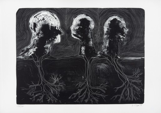 Barthélémy Toguo, Back to Illusion, 2009